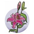 С каким цветком вы схожи?